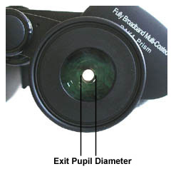 The exit pupil of binoculars. The maximum exit pupil of the human eye is 7 mm when completely dark adapted, but it shrinks slowly with age. Over age 50 or 60, most people have a maximum exit pupil of 5 mm, so make sure your binoculars do not have a larger exit pupil or some of the light from the objective lenses will not enter your eyes.